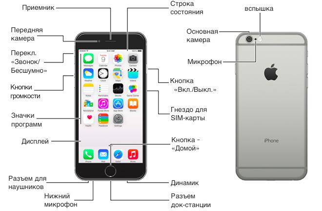 инструкция по эксплуатации айфон 5 s